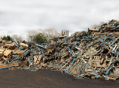 industrial-wood-waste-management-removers